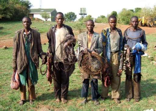Image result for african poachers