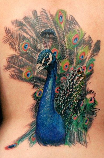 wildlife conservation, wildlife conservation blog, wildlife tattoos on