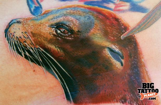 galapagos sea lions bush warriors rh bushwarriors wordpress com sea lion tattoo designs Ocean Fish Tattoos