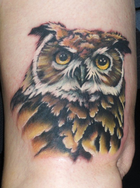 Tattoo by Mump Owls are a critical component of the ecosystem
