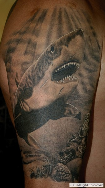 the gallery for great white shark tattoo designs. Black Bedroom Furniture Sets. Home Design Ideas