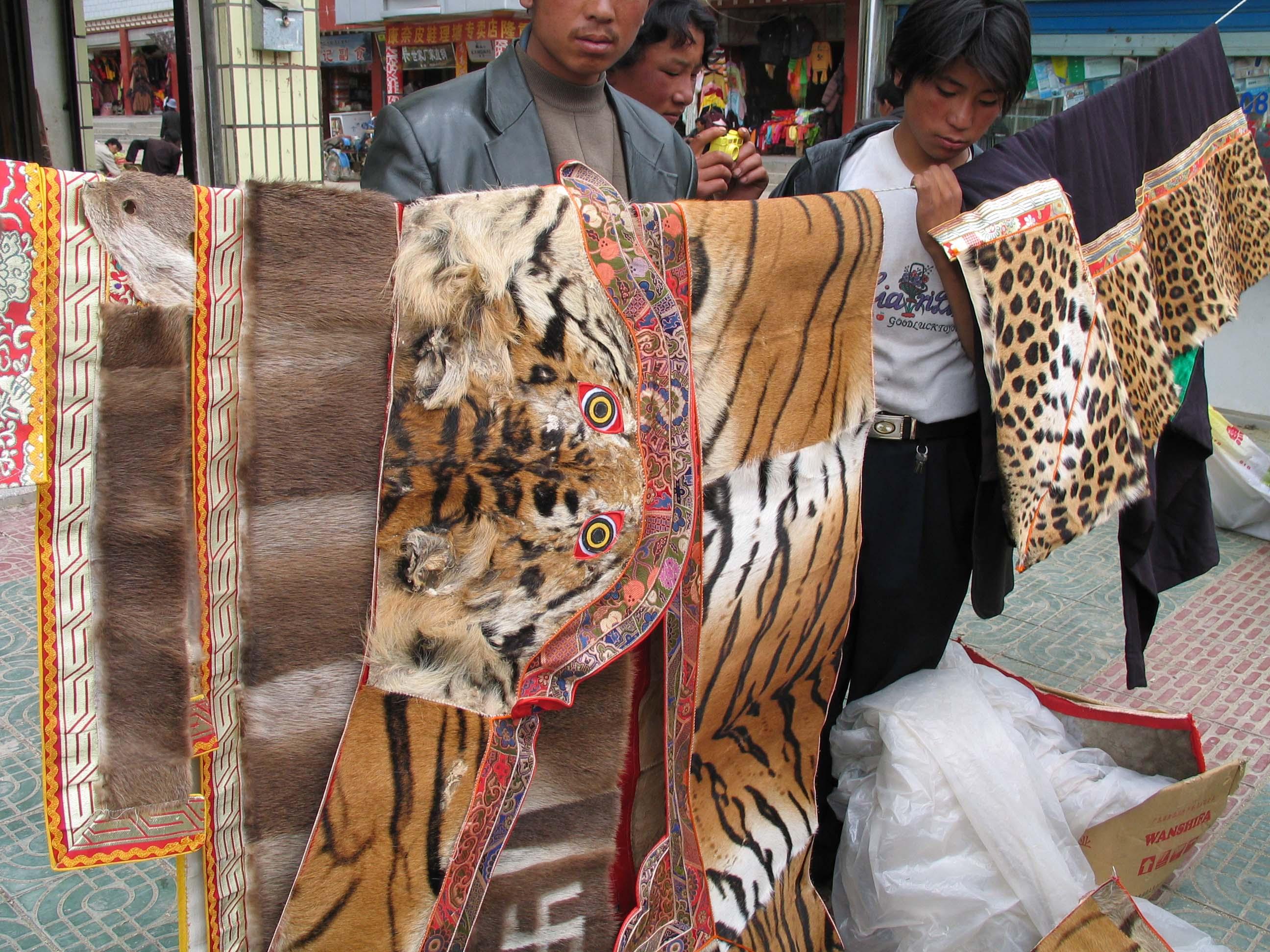 chinesische tiger tattoos