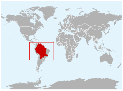 Geographical region of Giant Armadillo